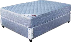 Apollo Spring Mattress